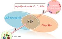 quỹ tương hỗ - cổ phiếu