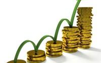 Học đầu tư và đầu tư